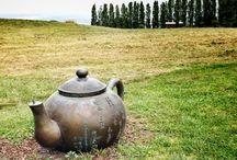 zealong tea estate scenery