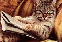 Books Worth Reading / by Donna Martinez-Claras
