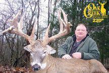 Oak Creek Ranch 2009
