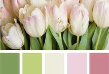Spring Palettes