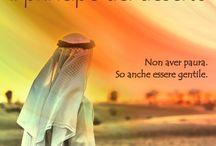 Il principe del deserto / Non avere paura, so anche essere gentile.