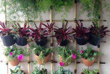 ideias para jardinagem