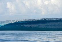 surfsurfsurf / by Ellen Mendoza