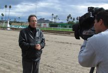 Turf in the News / We make great horse racing and we make a little news . / by Turf Paradise Racetrack