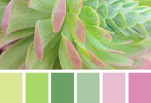 Office Colour Scheme