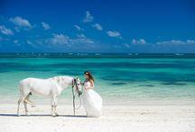 Punta Cana Wedding / punta cana wedding, punta cana wedding photographer, dominican wedding, destination wedding