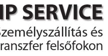 MB VIP Service