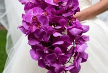 2014 color of the year Orchid