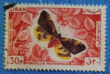 Personal STAMPS Collection LIBAN