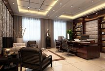 director office design