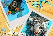 FB competition / Promoting using logo or swim w tiger
