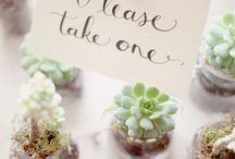 """Wedding: """"Green"""" Theme / Eco-friendly weddings and events can be extremely rewarding. Go green!"""