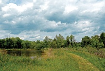 Land Conservation in the Triangle
