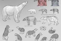 állatok testközelből
