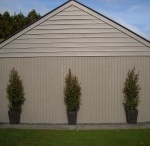 External House Ideas