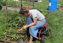 Adaptive Gardening & Farming Equipment / Devices and equipment that aids in gardening, landscaping, or farming.