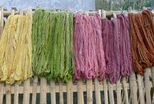 Natural Plant Dye / 0