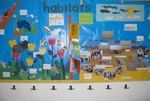Teaching: Classroom Displays