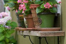 Gardening / by Tiffany Owings