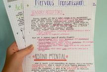 Note Taking Tips for Students / Note taking, notes, textbook, mindmaps, student, studying, study, university, college, study advice, study hacks, mature student, distance learner, adult student