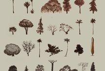 nature elements