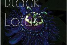 black lotus / My first novel