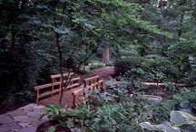 My Garden... In My Mind