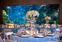 Dream Wedding At An Aquarium! / A beautiful wedding at an Aquarium: romantic, and unique