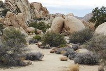 photo ref - landscapes