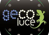 LAVORA CON NOI / Offerte di collaborazione lavoro con Genesi Luce / Gecoluce