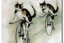 Vintage Cats / by Carol Quinter