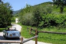 Sprintage Tour / Sprintage: Noleggio auto d'epoca (Alfa Romeo Spider, MG, Fiat, Triumph…) per turismo, incentive aziendali ed eventi. - See more at: http://sprintage.it
