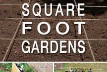 Gardening Square Foot&Layouts