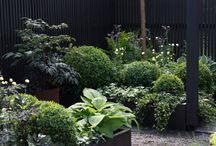 Planter boxes looks.