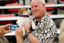 Victor E Bulldog III / Our new LIVE mascot, Victor E Bulldog III  / by Fresno State
