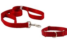 Buy 4petneeds Dog Leash Set Red Xl