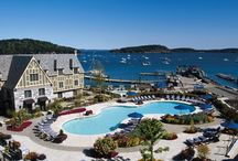 Harborside / Nestled between rolling green hills and calm blue seas, Bar Harbor is one of Main'es most picturesque villages. Home to Acadia National Park, the town's long history, fabulous food and homegrown hospitality also make it a top destination in the state. / by Harborside Bar Harbor