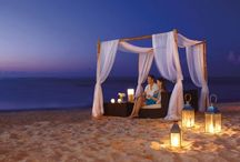 Florida Honeymoon Tour Packages / Honeymoon Special Packages offers Honeymoon Tour Packages for Florida at affordable prices.