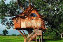 Casas na árvore - Tree Houses