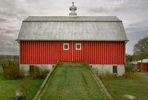 Barns / by Lynne Beecham