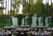 Wedding Venues / Some of the most beautiful wedding venues around the world! / by With This Favor