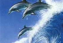 Olas del mar  y los delfines