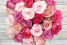Flowers Delivery Online In Ahmednagar