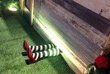 Wizard of Oz / Follow the Yellow Brick Road to the Land of Oz!