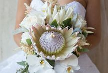Wedding bouquets / Here's a collection of some of our favourite wedding bouquets we've done in the past - enjoy!