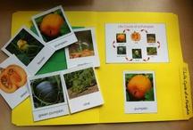 Homeschool Unit: Autumn