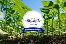 Banners Segarra