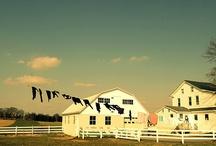 Amish / by Marybeth Drope