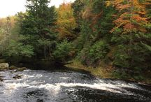 Salmon Fishing Rivers In Scotland / Locations of the best salmon fishing rivers in Scotland