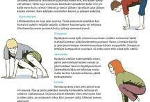 Liikunnan opetus